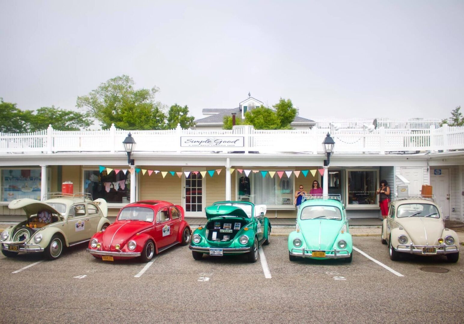 VW bug lined up